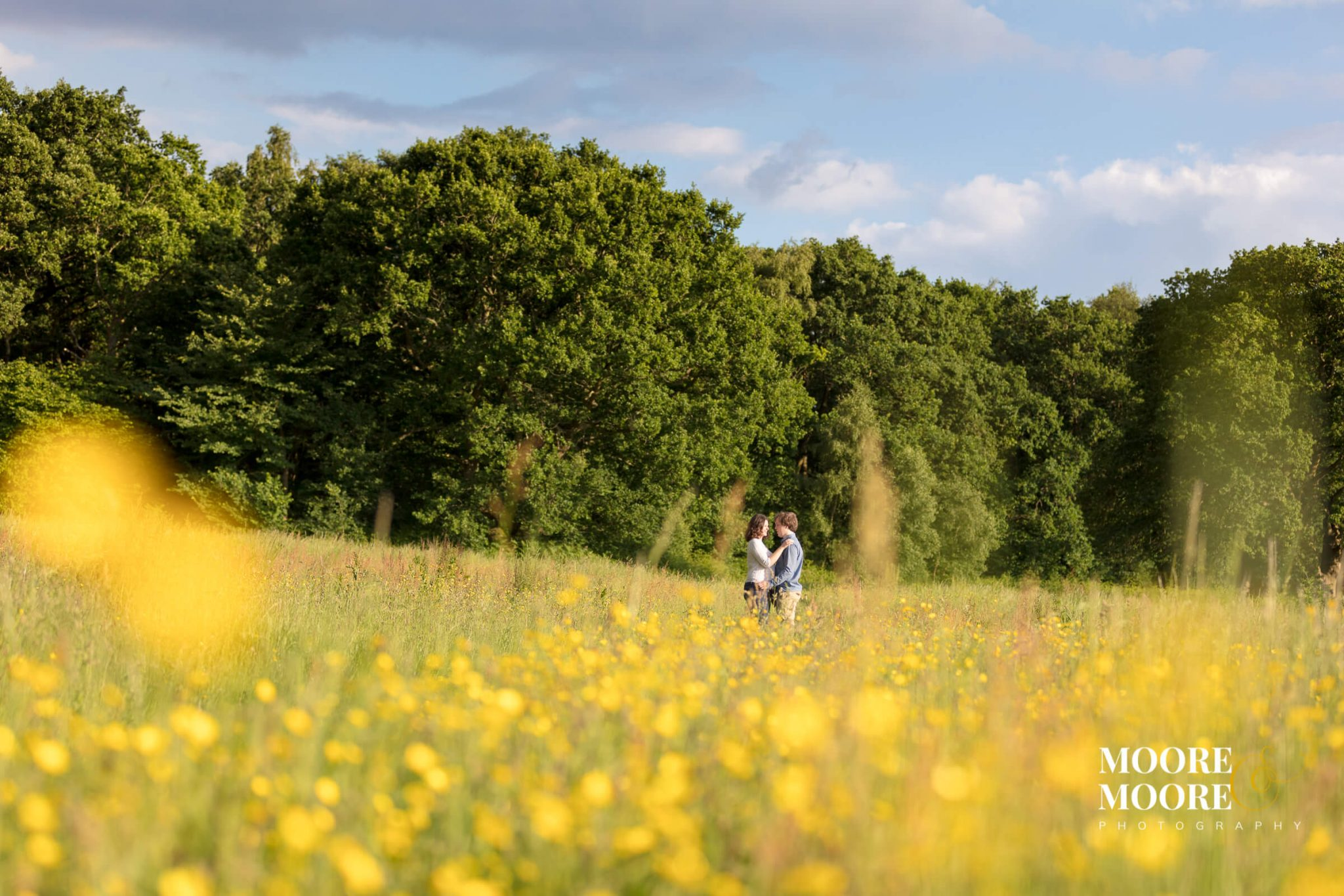 Amid the buttercup meadows. Beautiful engagement photography by Hampshire photographer, moore&moore