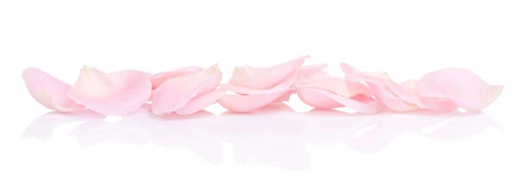 Pink petals confetti